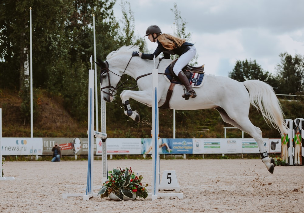 a young girl riding a horse competitively