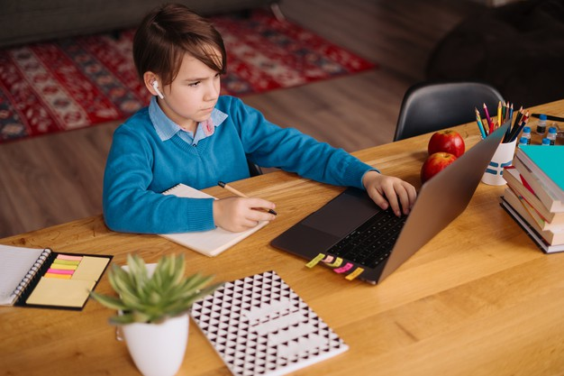 a student using his online school's resources